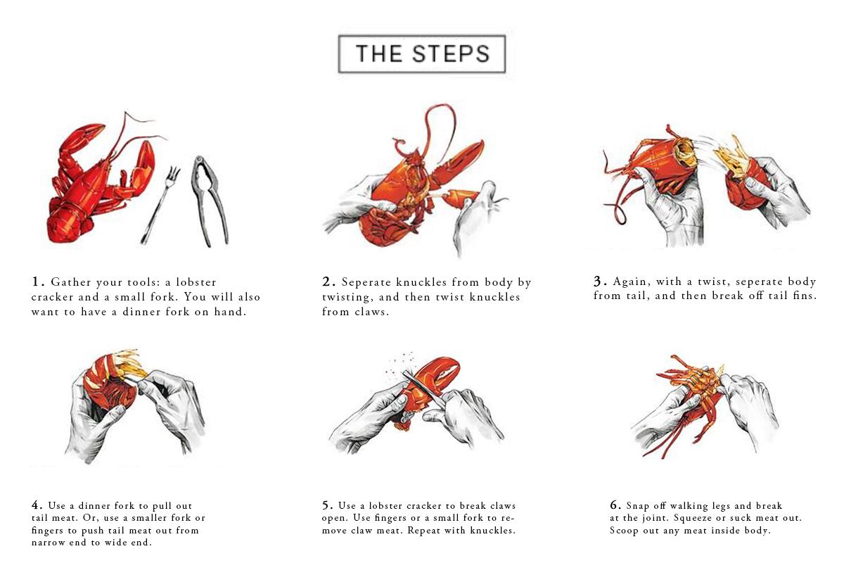 Lobster 101 Final.jpg
