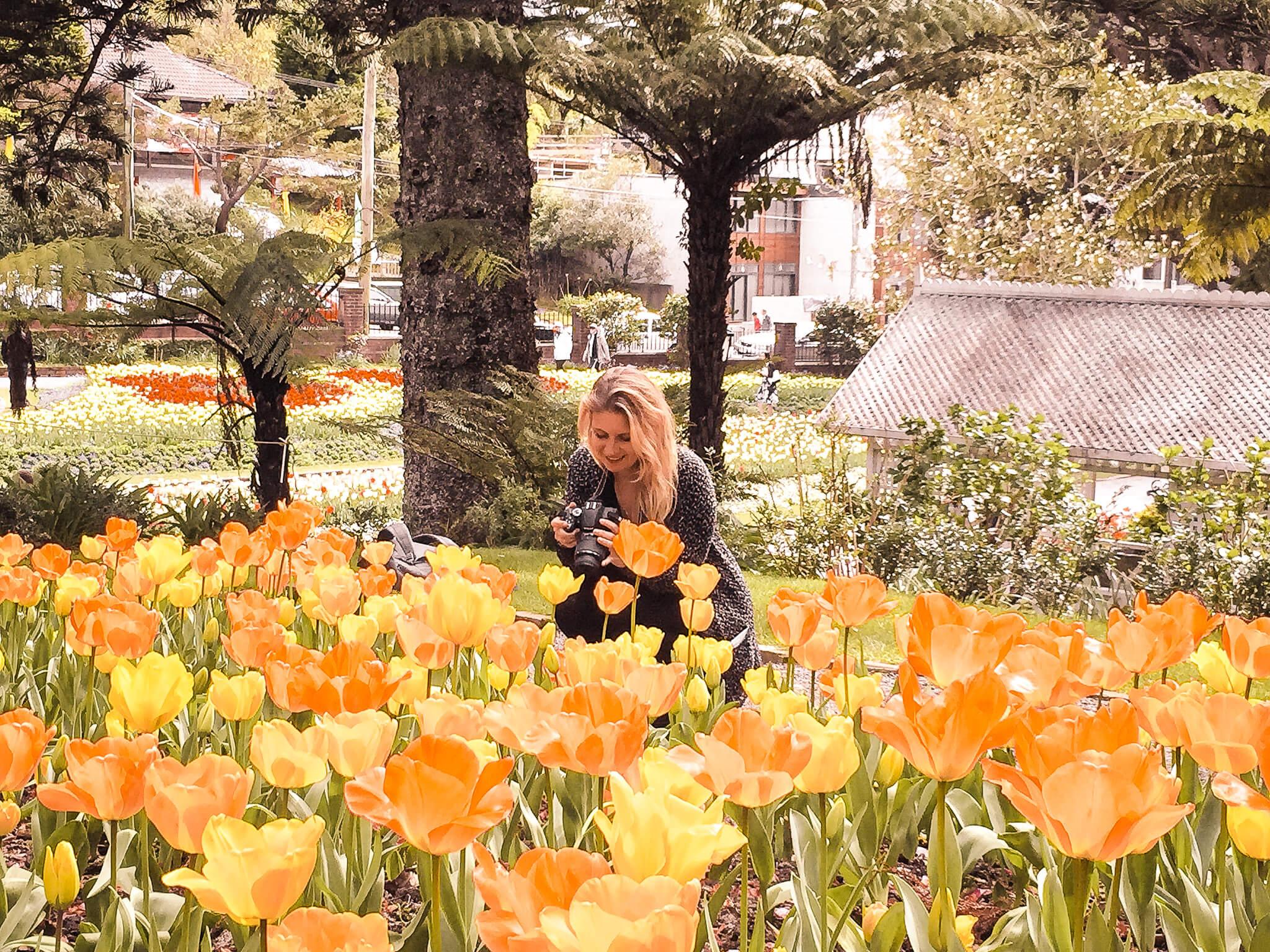 Botanischer Garten - Wellington