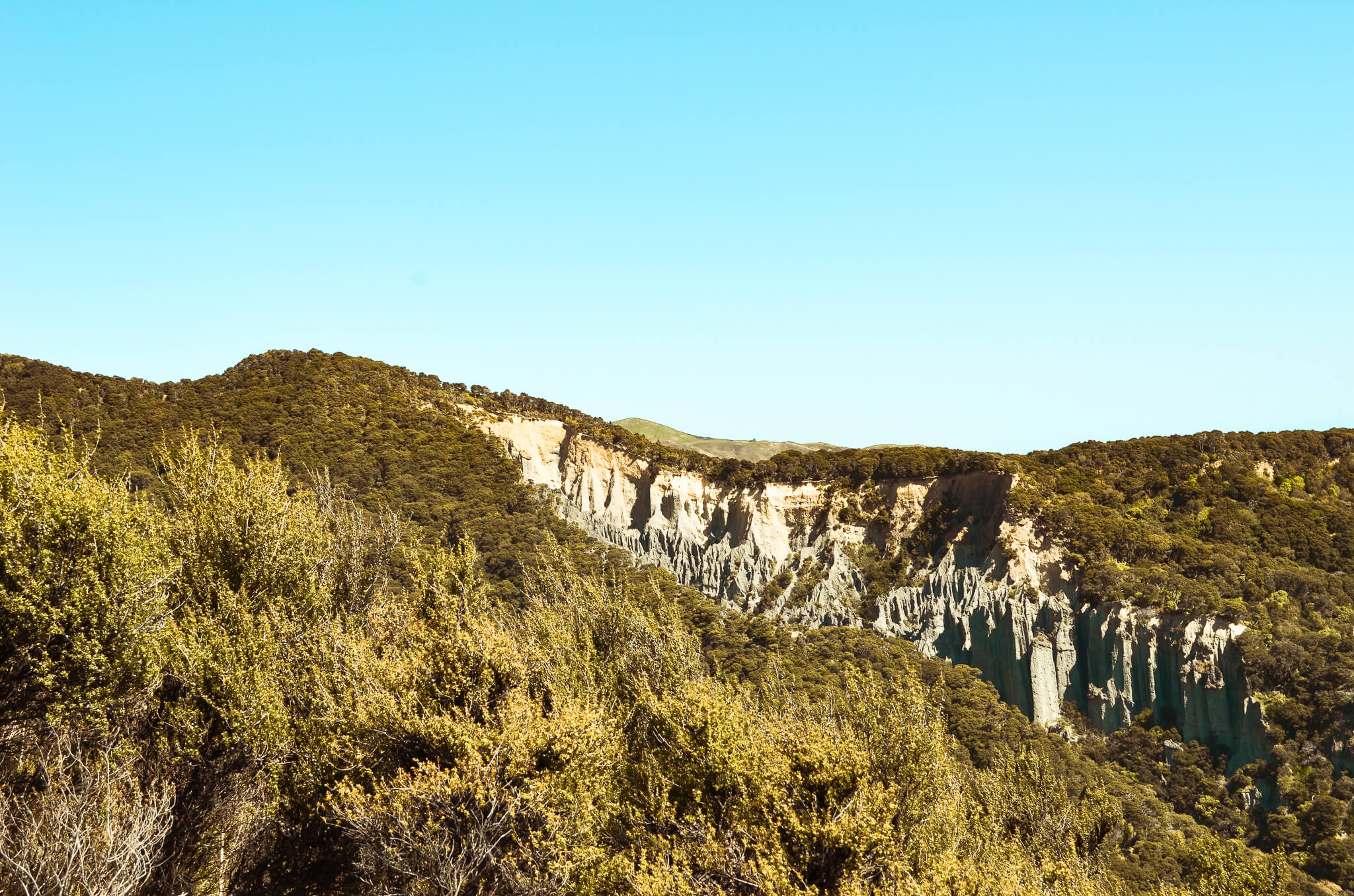 Putangiru Pinnacles - Nordinsel, Südspitze