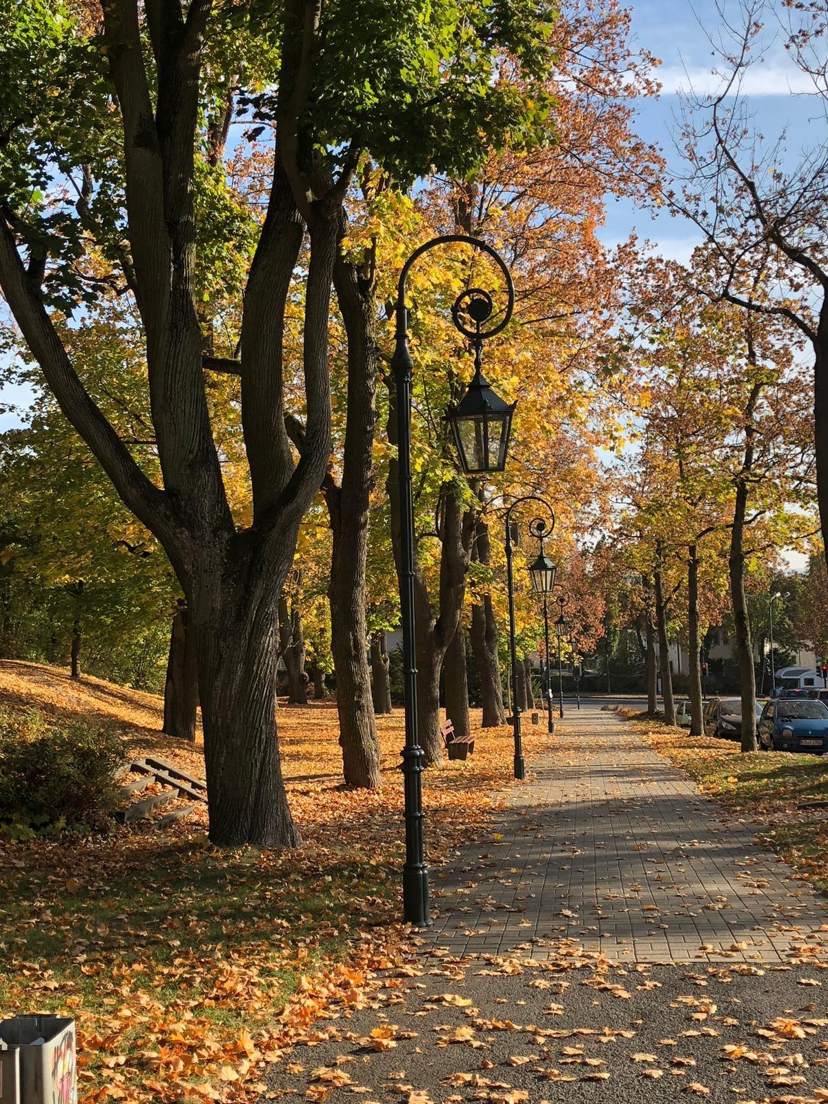 Goldener Herbst in Fulda - Kloster Frauenberg