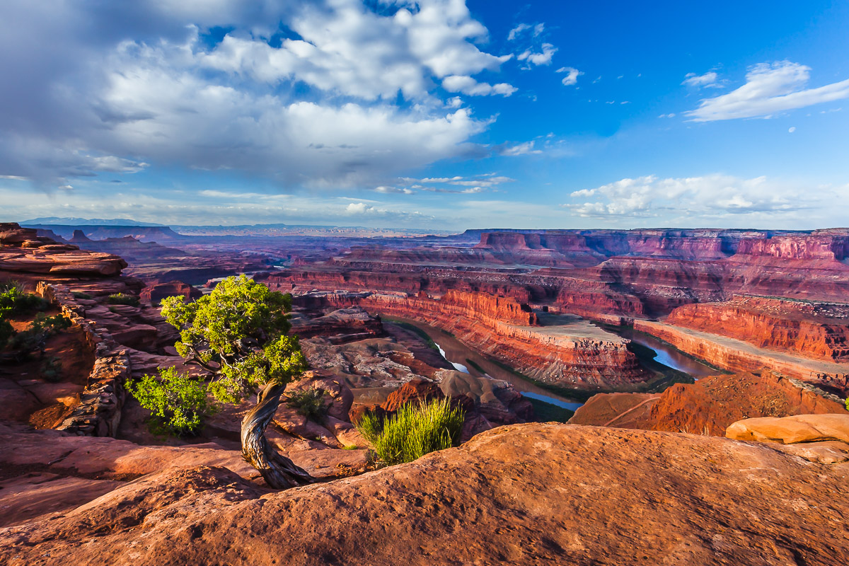 canyonlands -9045.jpg