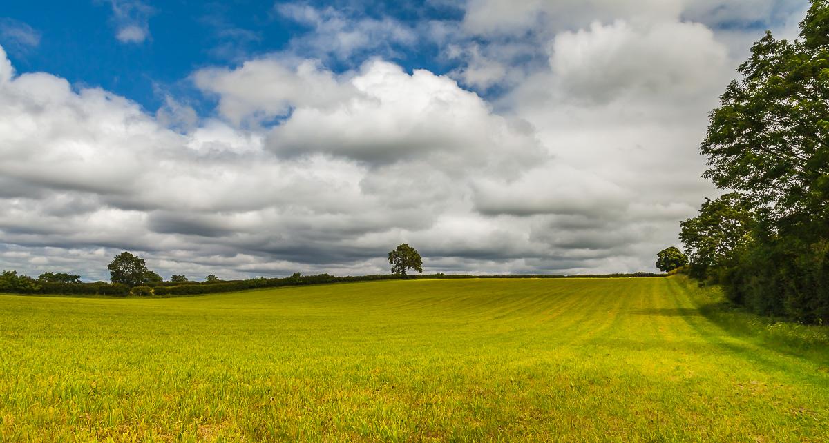 landscape england-3320.jpg
