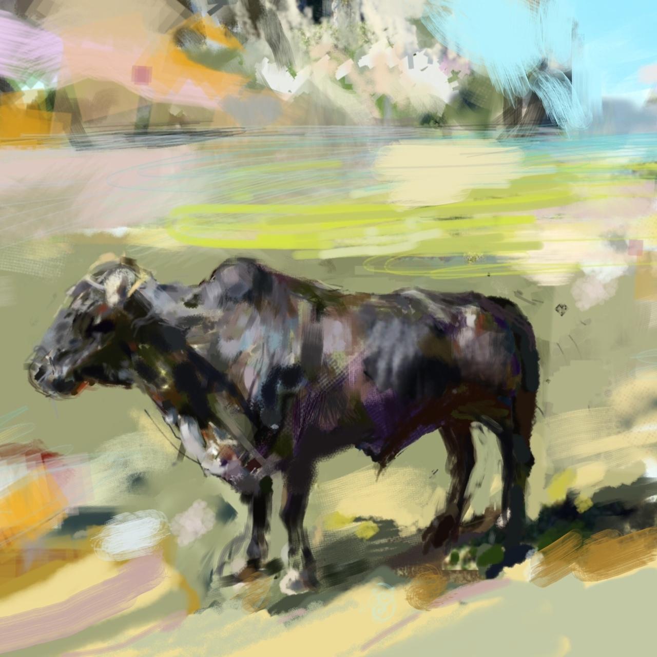 Cuban Bull