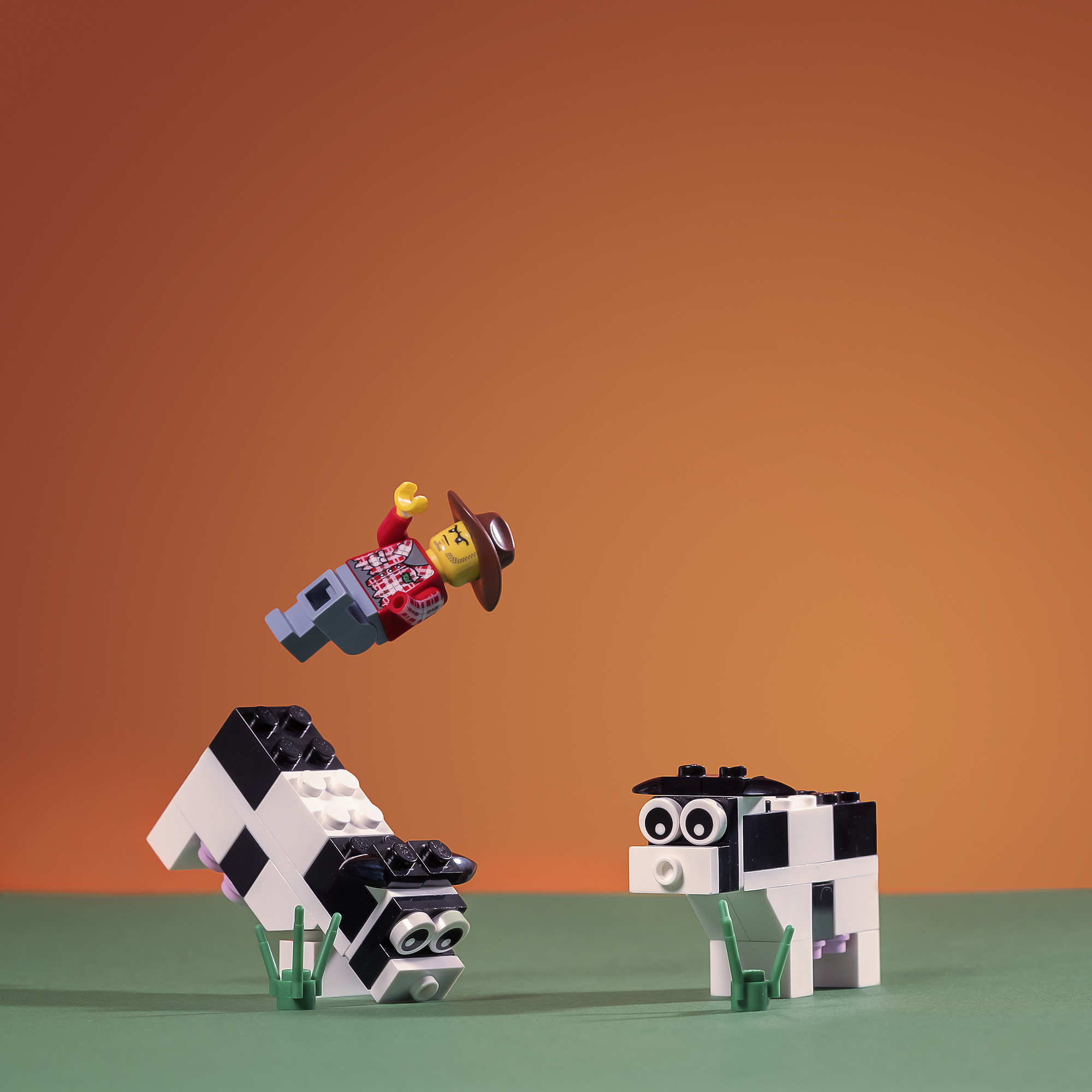 Lego_Photography_Personal_Project_14.jpg