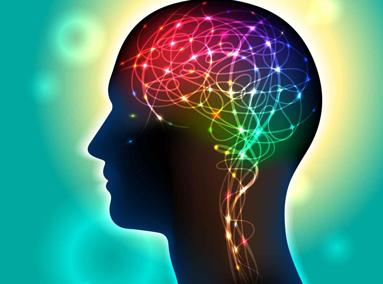 dreamstime_xl_neurons_in_the_brain_firing_49886130_opti.jpg