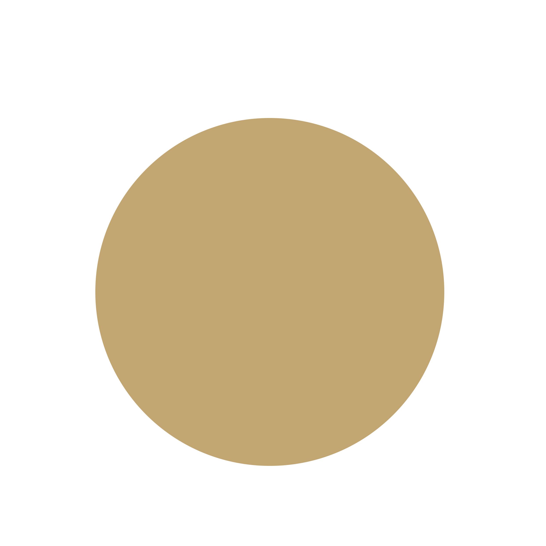 PRECIOUSIMPLICITY Logo circle.jpg
