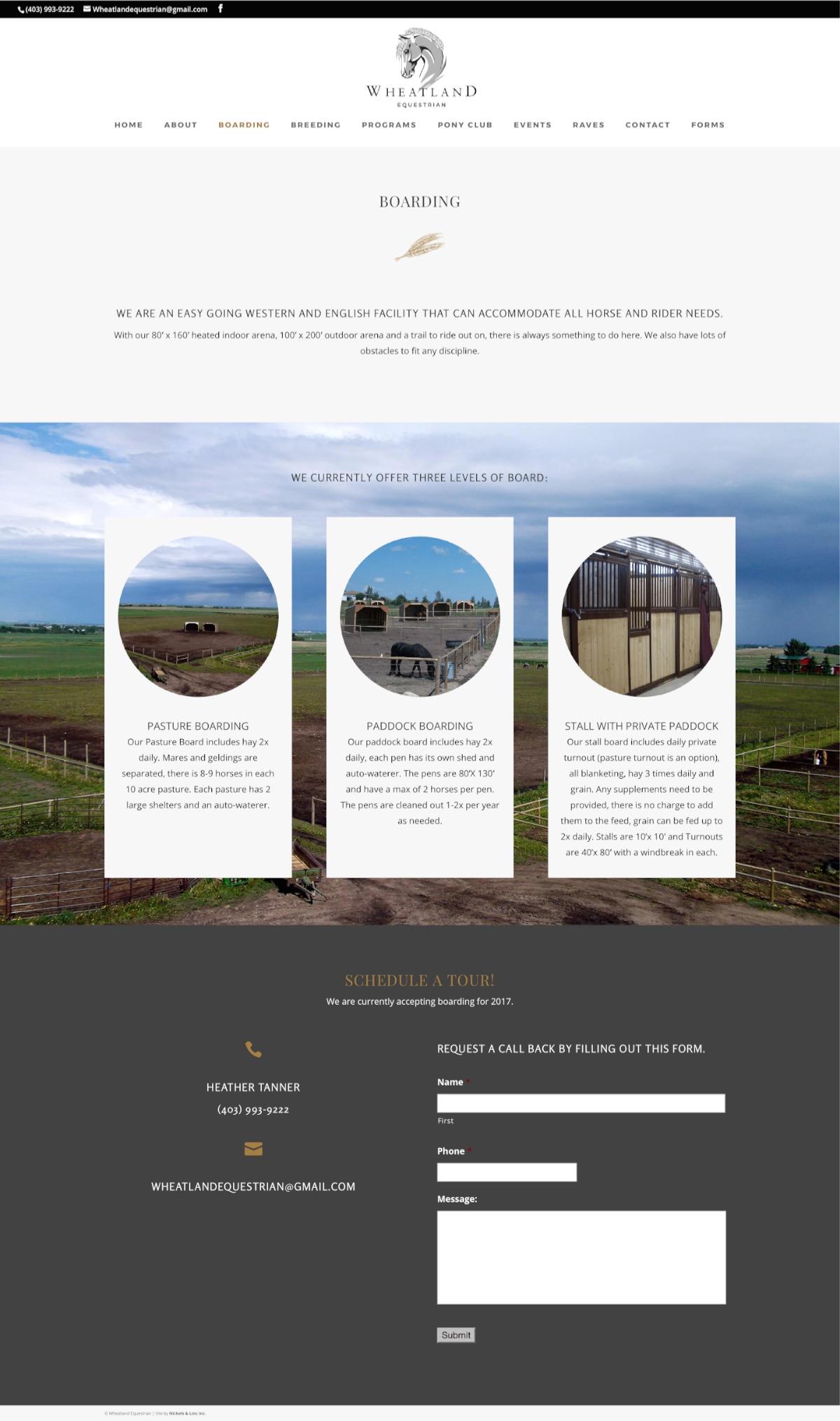 okotoks-horse-boarding-website-breeding-1.jpg