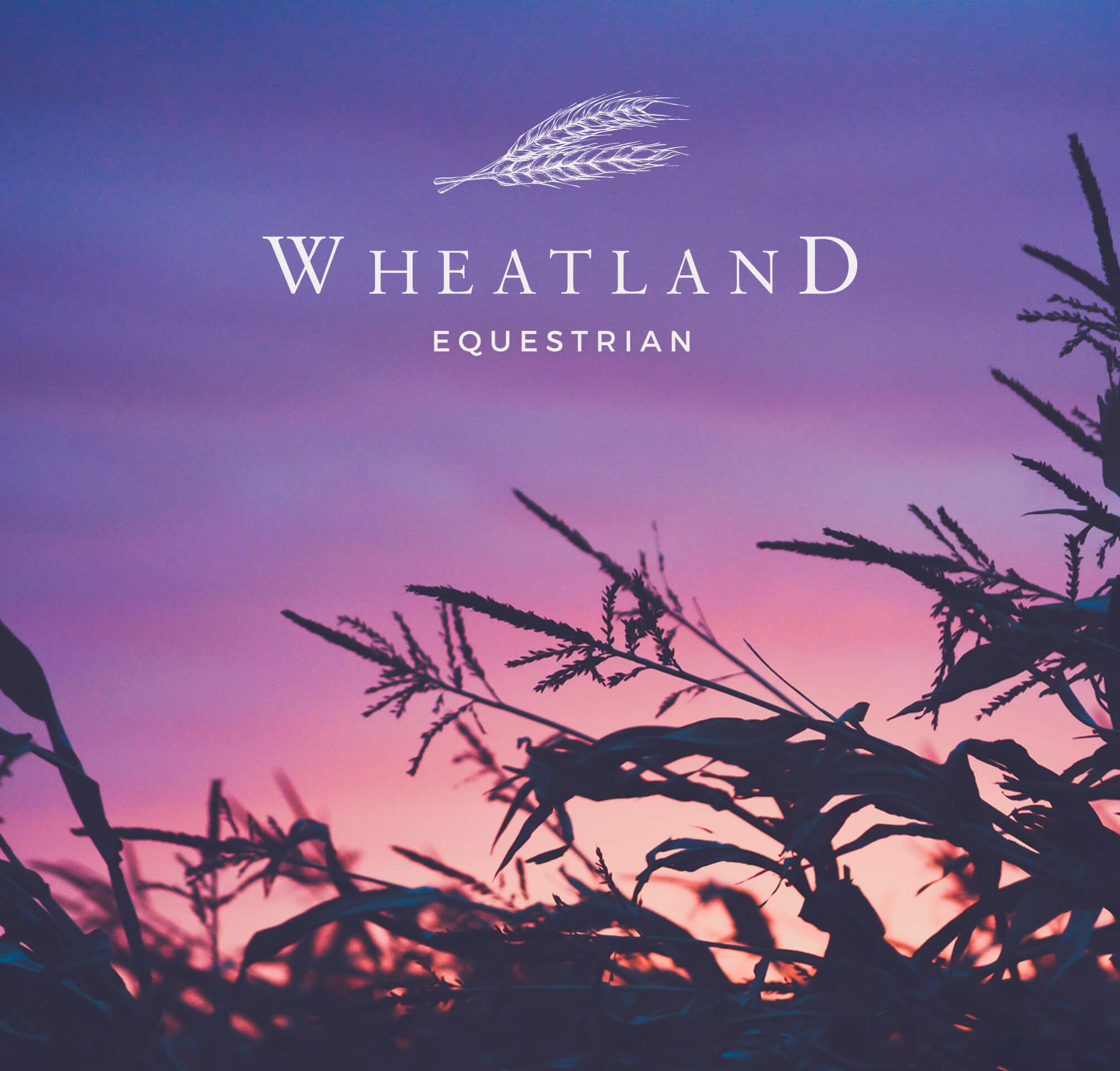 wheatland-equestrian-okotoks-webdesign.jpg