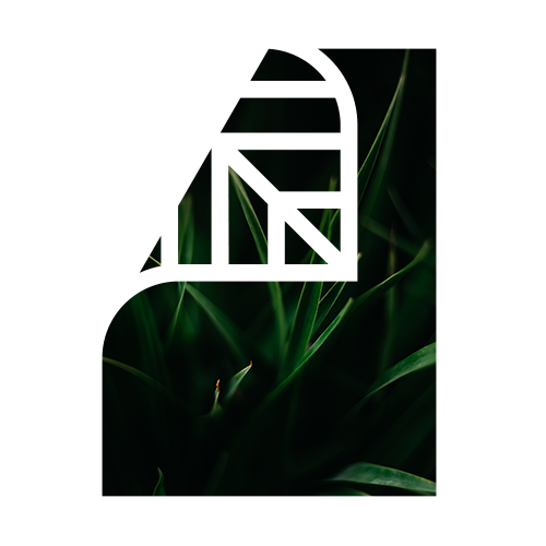 Screen Shot 2019-02-07 at 2.17.01 PM.png
