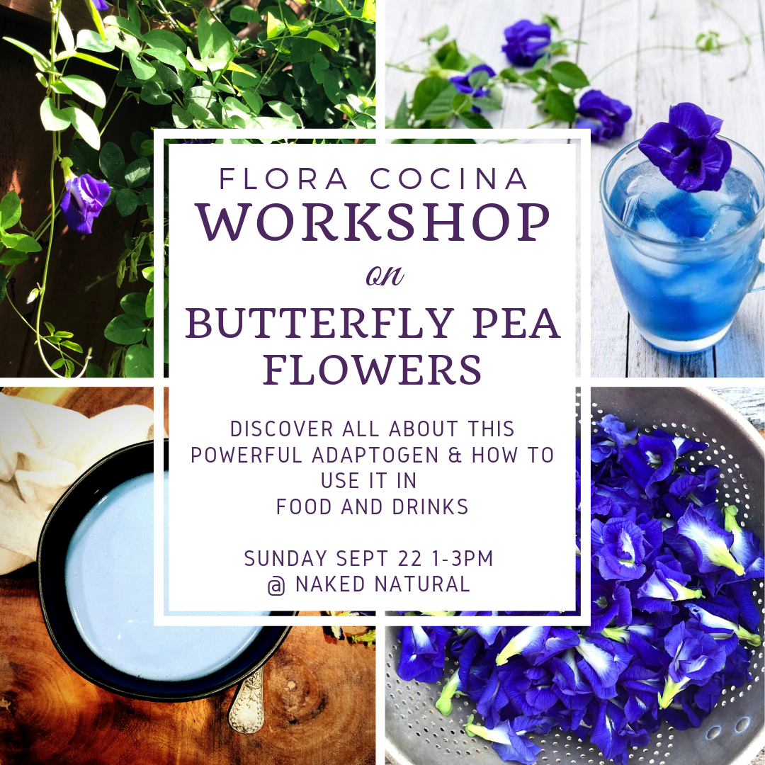 butterfly pea workshop.png
