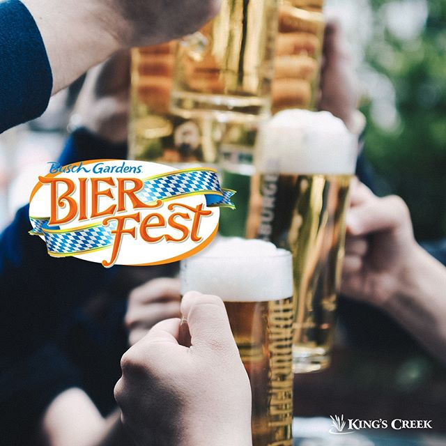 Bier Fest at Busch Gardens starts this Friday! With over 100 beers on tap and new live music and food offerings, we think it's a pretty good way to ring in the fall! #kingscreek #williamsburg #virginia #family #vacation #summer #buschgardens #bierfest #beer #hellofall #livemusic #food