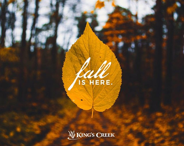 We LOVE the autumn season in Williamsburg! There are so many ways to enjoy all of the gifts nature has to offer. Visit the link in bio for our guide to outdoor fun when you stay at King's Creek!  #autumnseason #fallthings #nature #outdooractivities #outdoorfun #weekendgetaway #fallinwilliamsburg