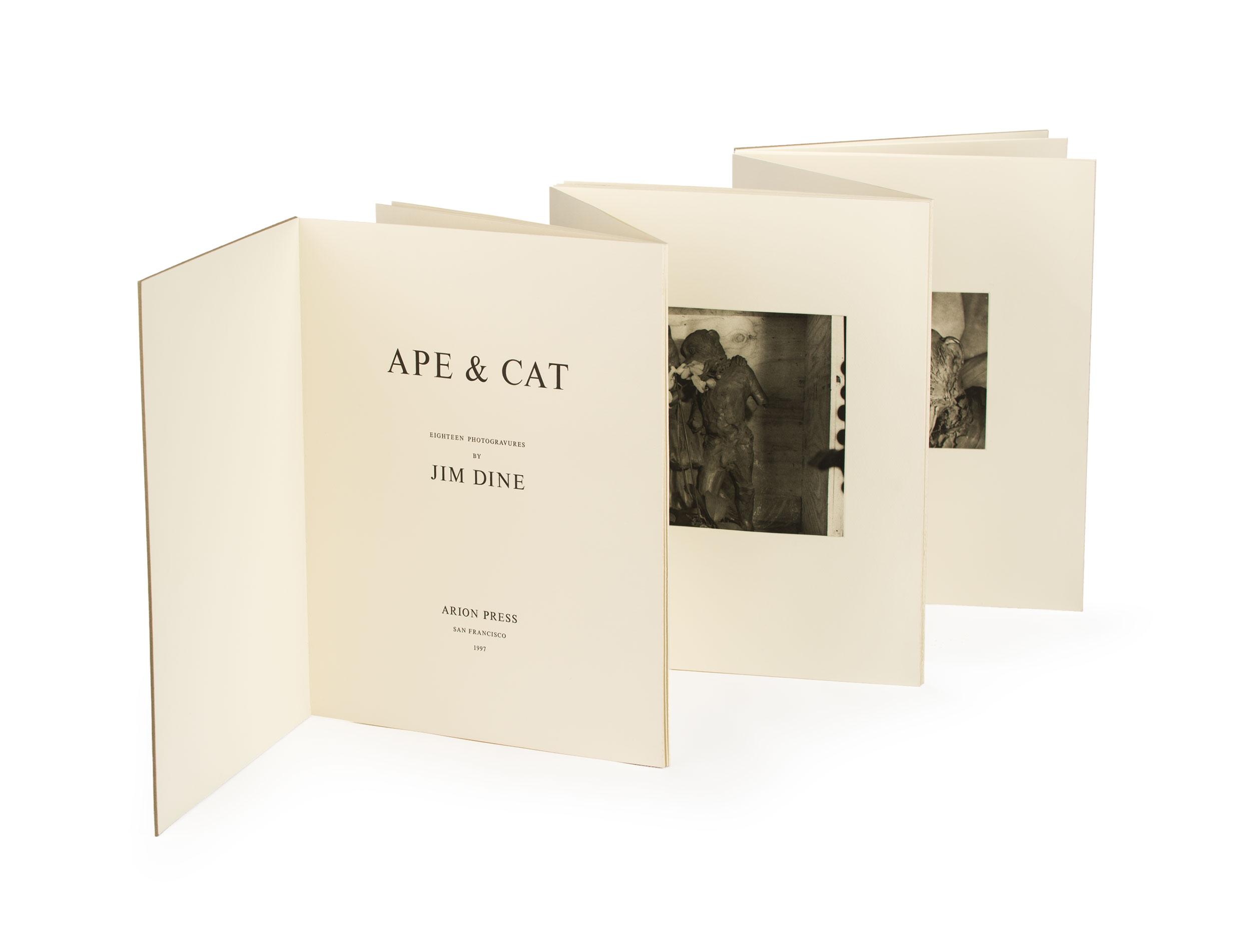 052_Ape-&-Cat-Accordion-02-fix.jpg