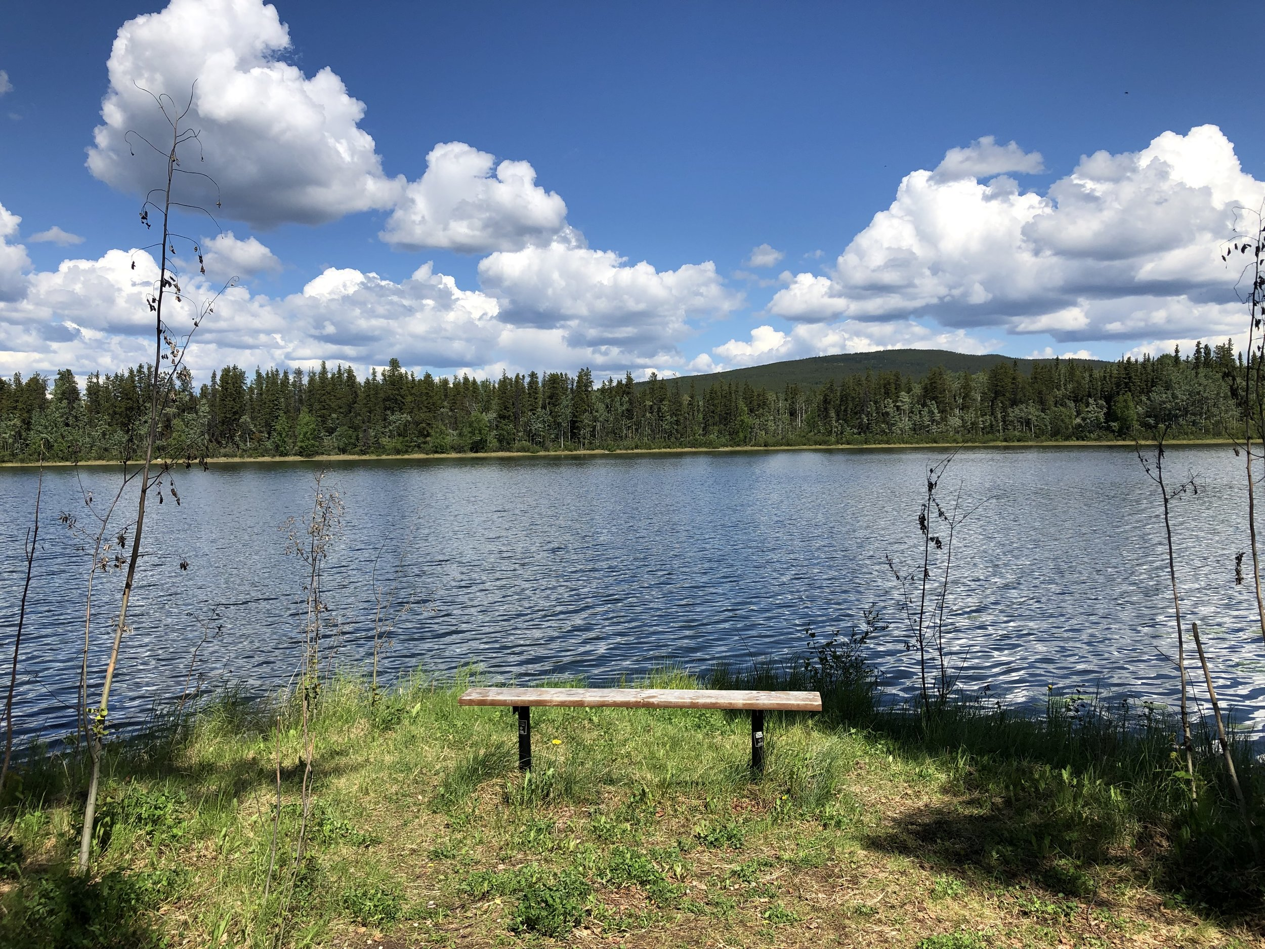 This looks like a good place to rest and contemplate intention settings. Wye Lake in Watson Lake, Yukon.