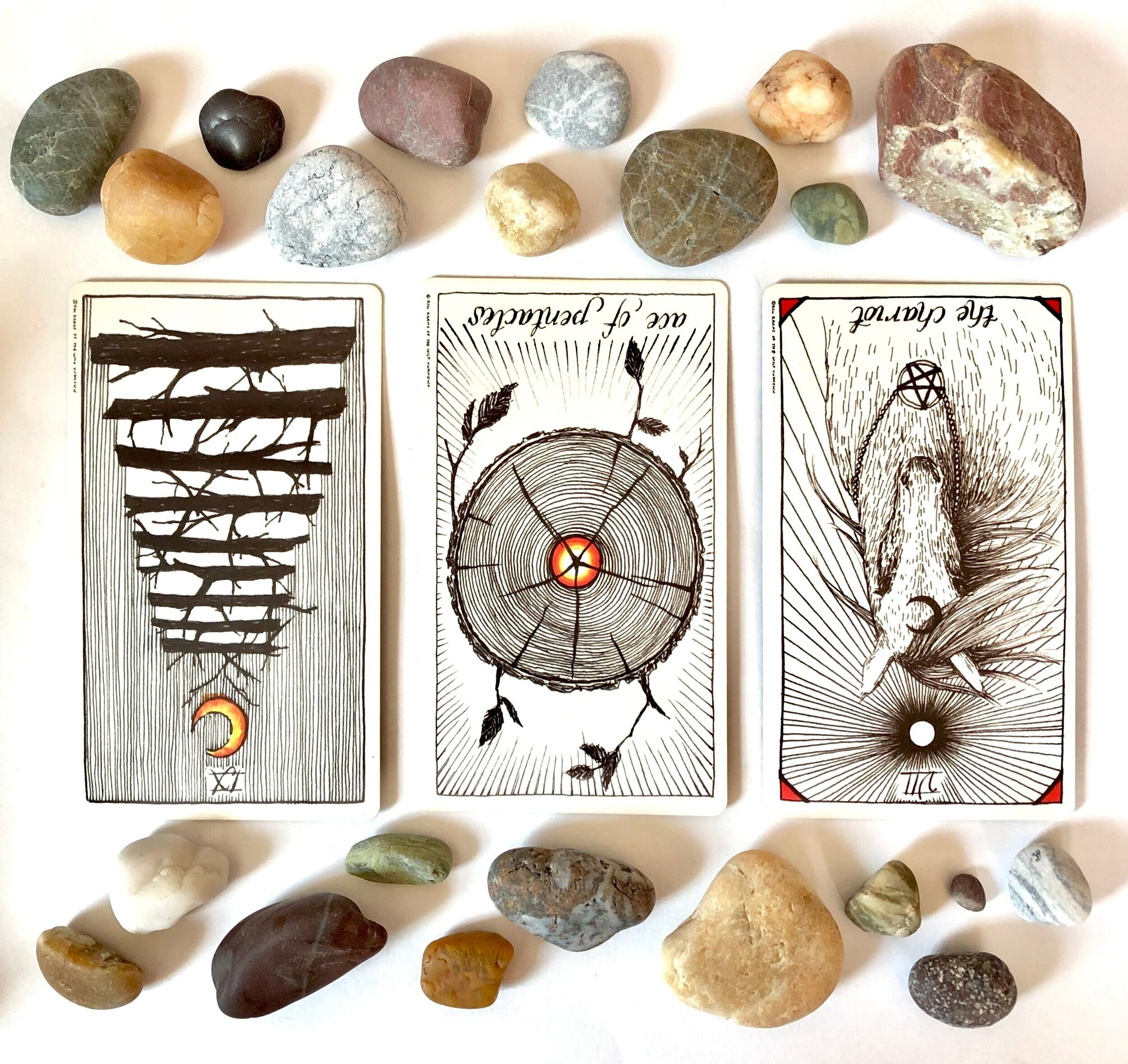 The Wild Unknown Tarot Deck: IX of Wands reversed, Ace of Pentacles reversed, The Chariot reversed
