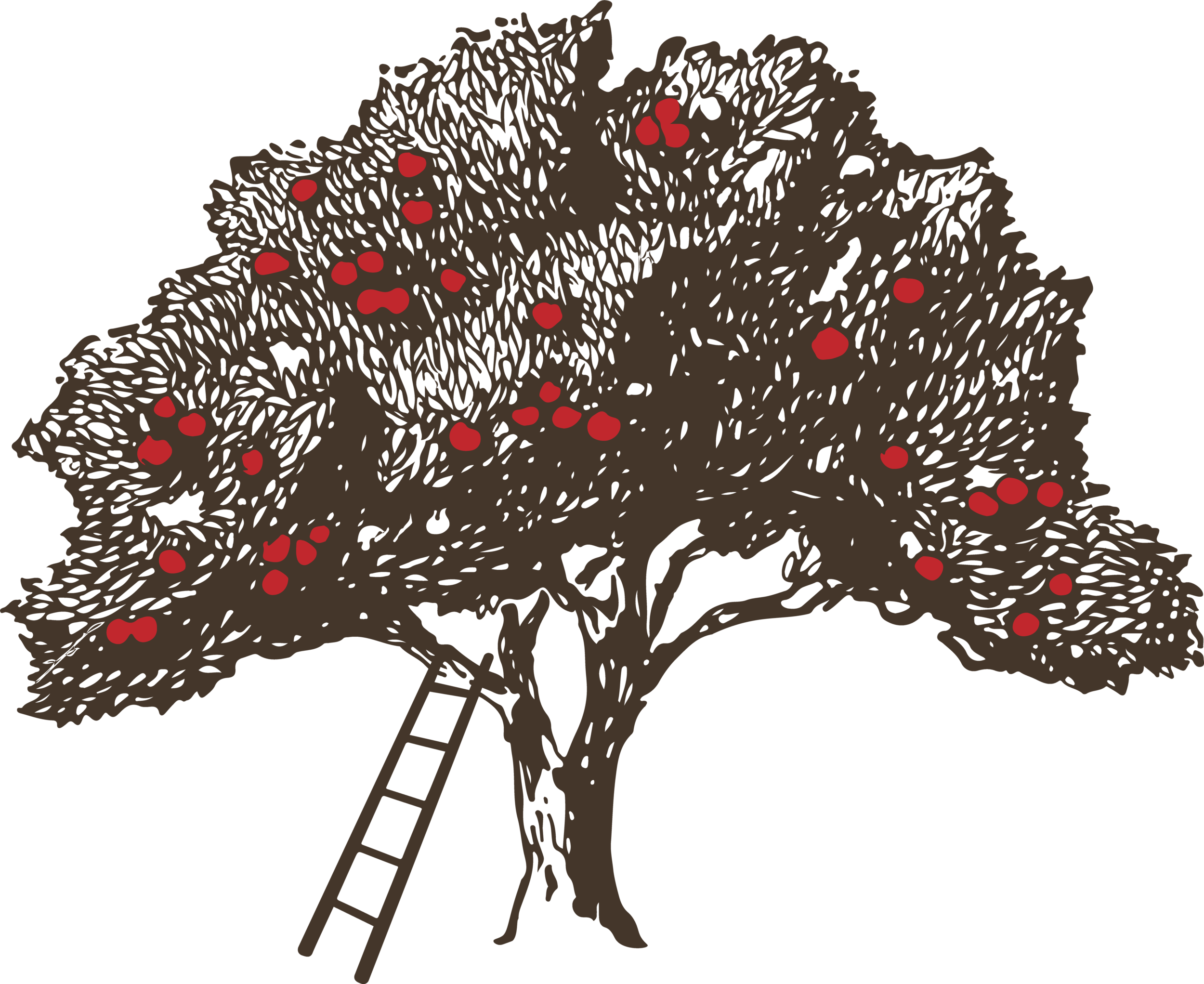 BATP logo_tree_no mountains.png