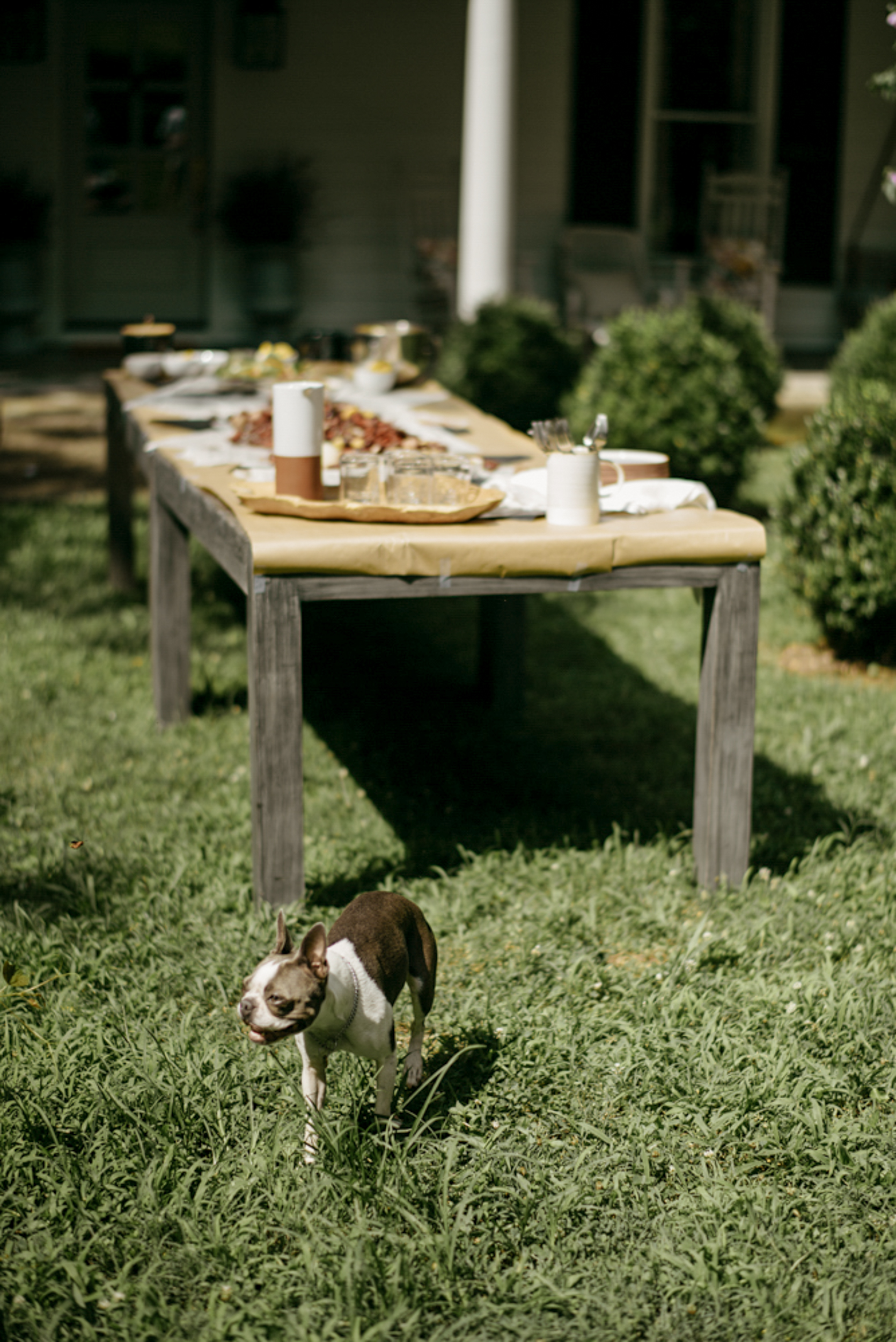 151-mayker-creative-crawfish-boil-summer-party-ideas-rentals-nashville-design-tips-hosting-entertaining-Fox-Country-Farmhouse-Fourth-of-July.jpg