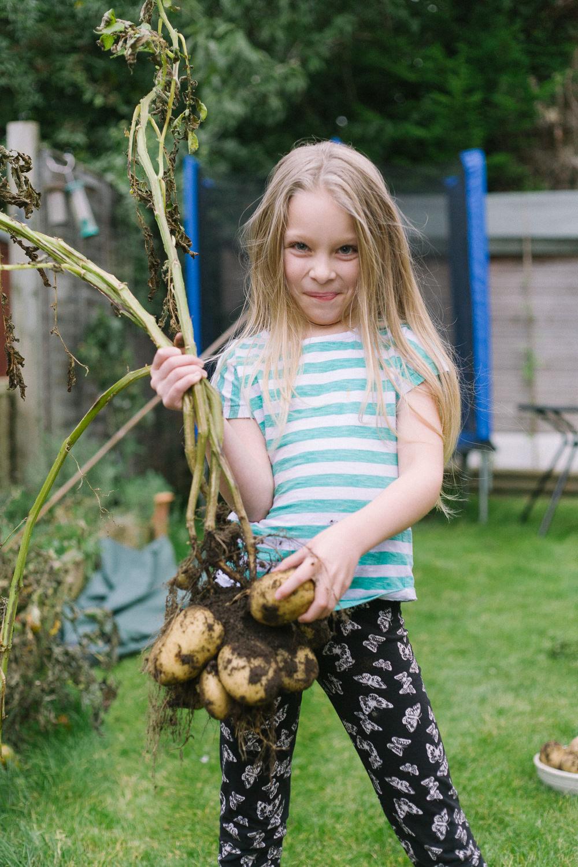 home_grown_potatoes-1.jpg