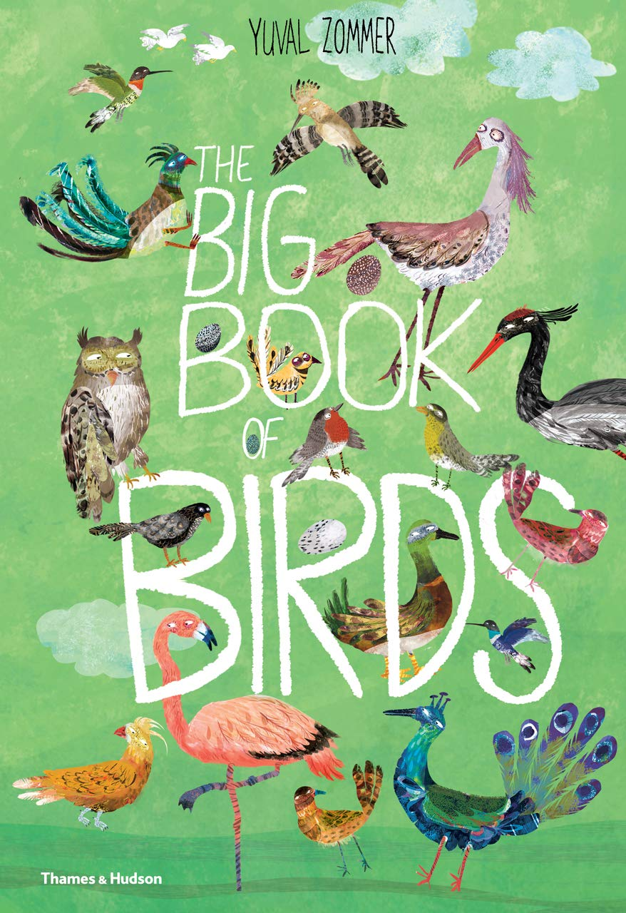 The Big Book Of Birds -