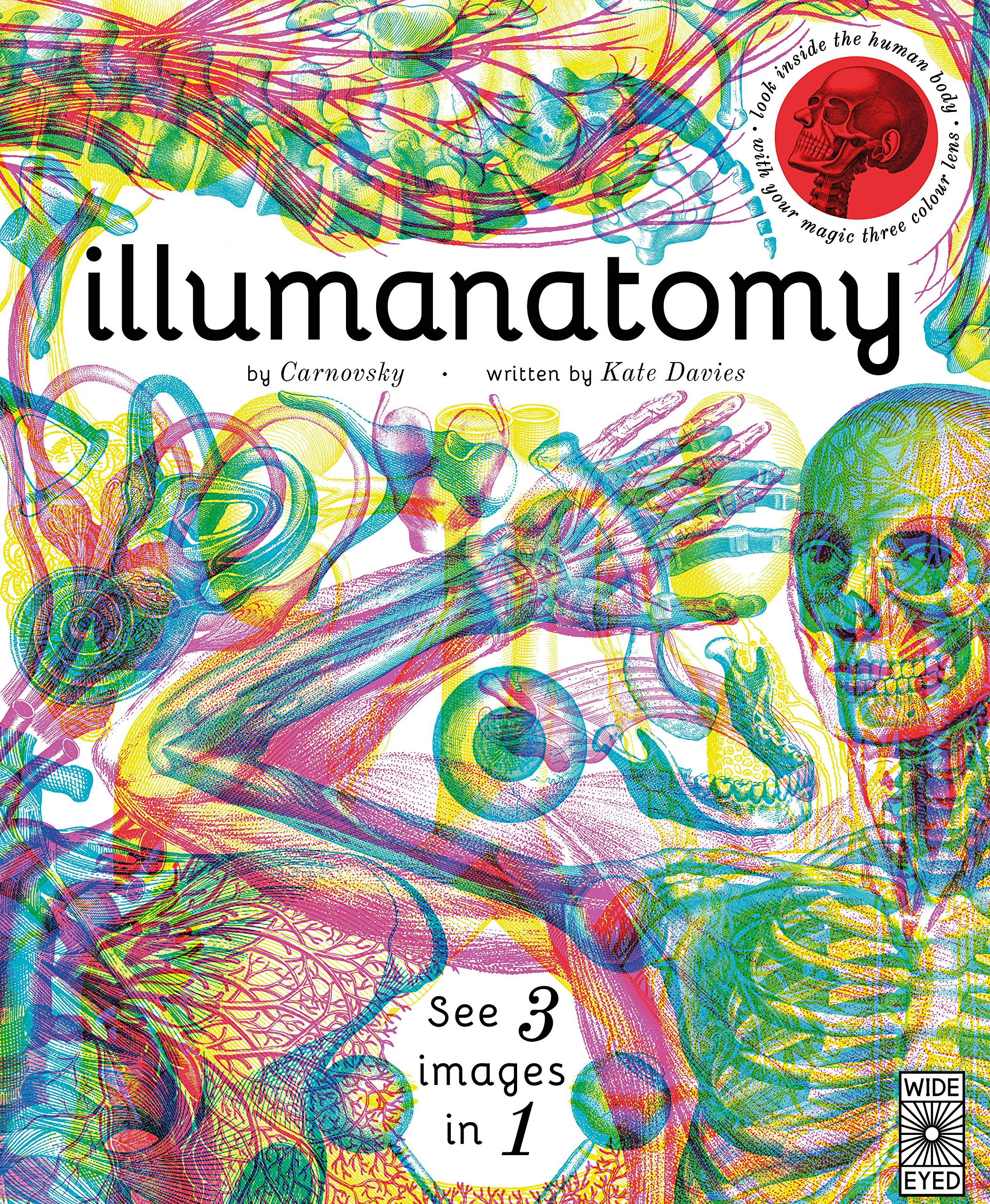 Illumanatomy -