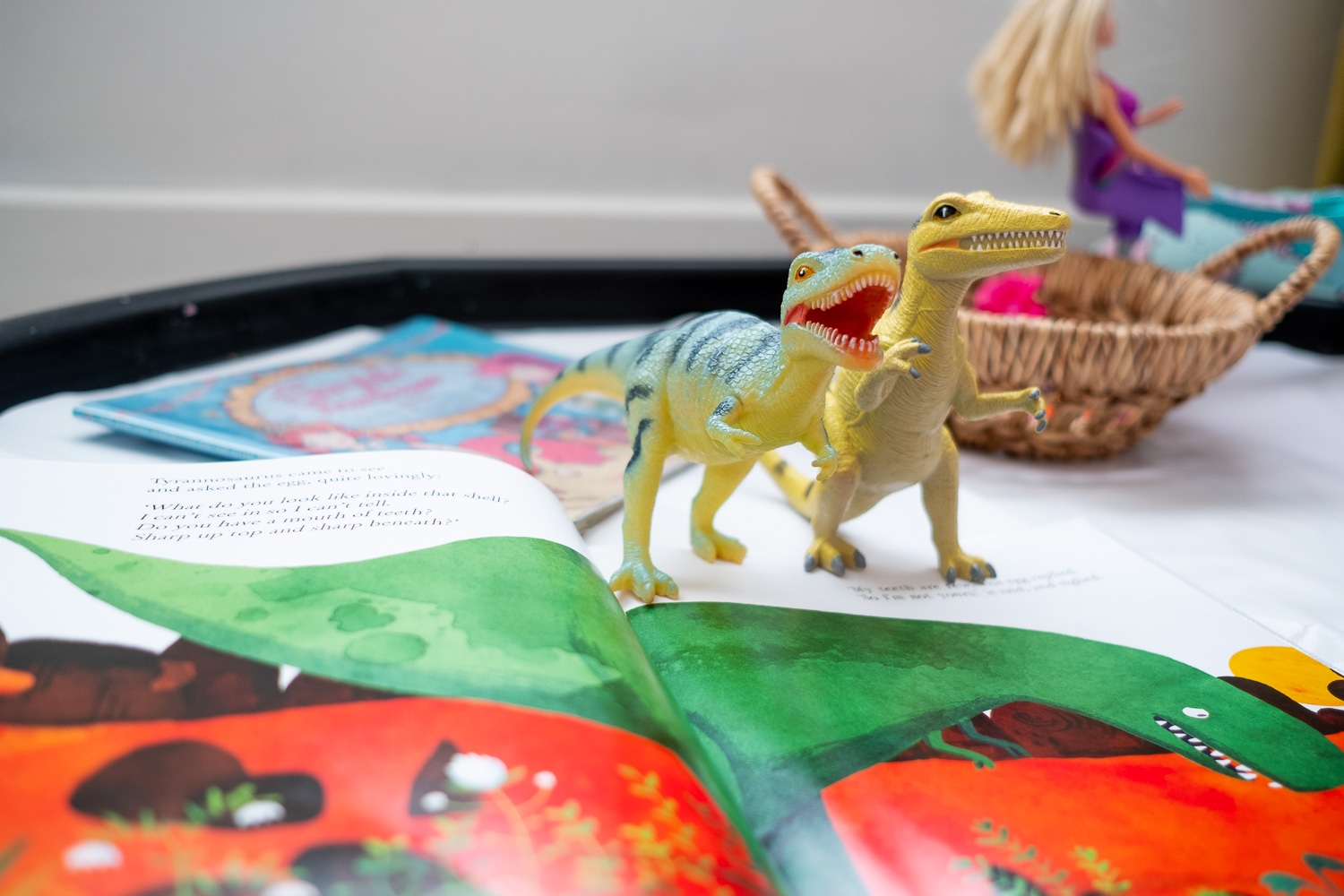 Dinosaur_Book_Basket -6.jpg