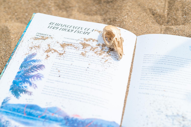 Lost_book_of_adventure-2.jpg