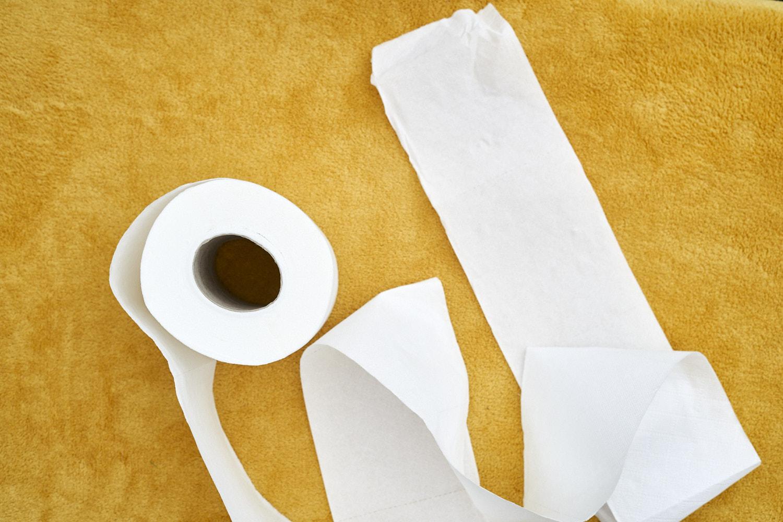 Pumpkin_toilet_roll_craft 1.jpg
