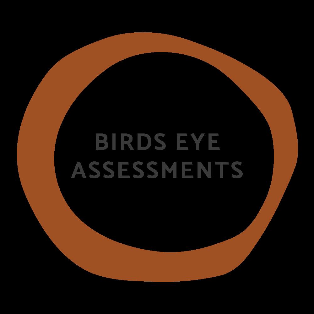 Birds Eye Assessment