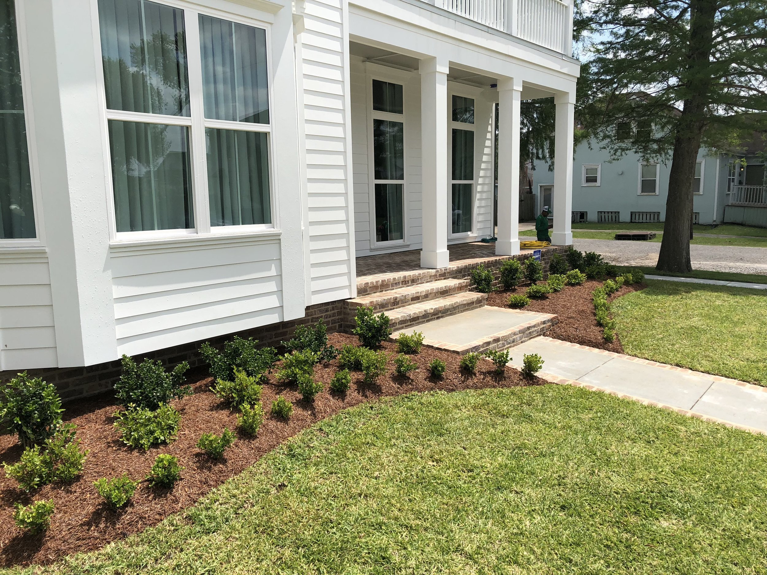 New garden bed with plants and pine straw