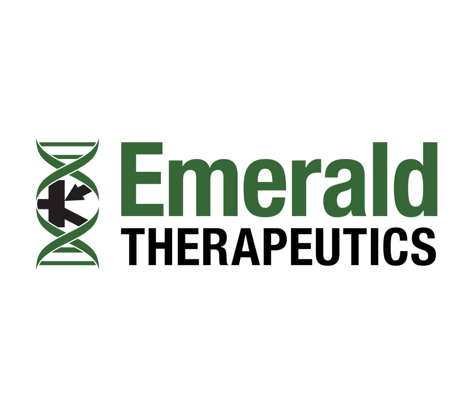 Emerald Therapeutics is an early-stage pharmaceutical company dedicated to curing persistent viral diseases.