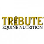 Tribute-Feed-Logo-resized-image-150x150.jpg