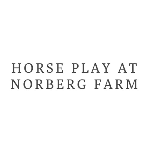 Horse Play at Norberg Farm