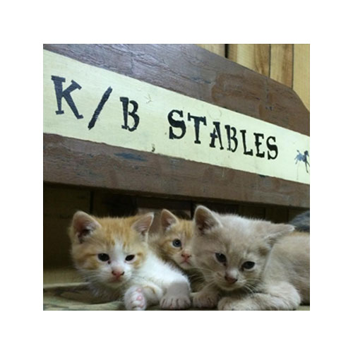 K/B Stables