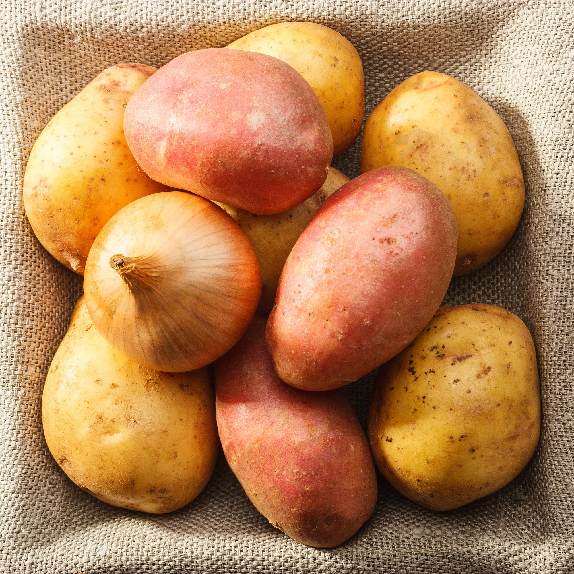 Select Seasonal Items Now Available! - Stop in to pick up seed potatoes, onion plants and onion sets! Please note: these will be available on a seasonal basis.