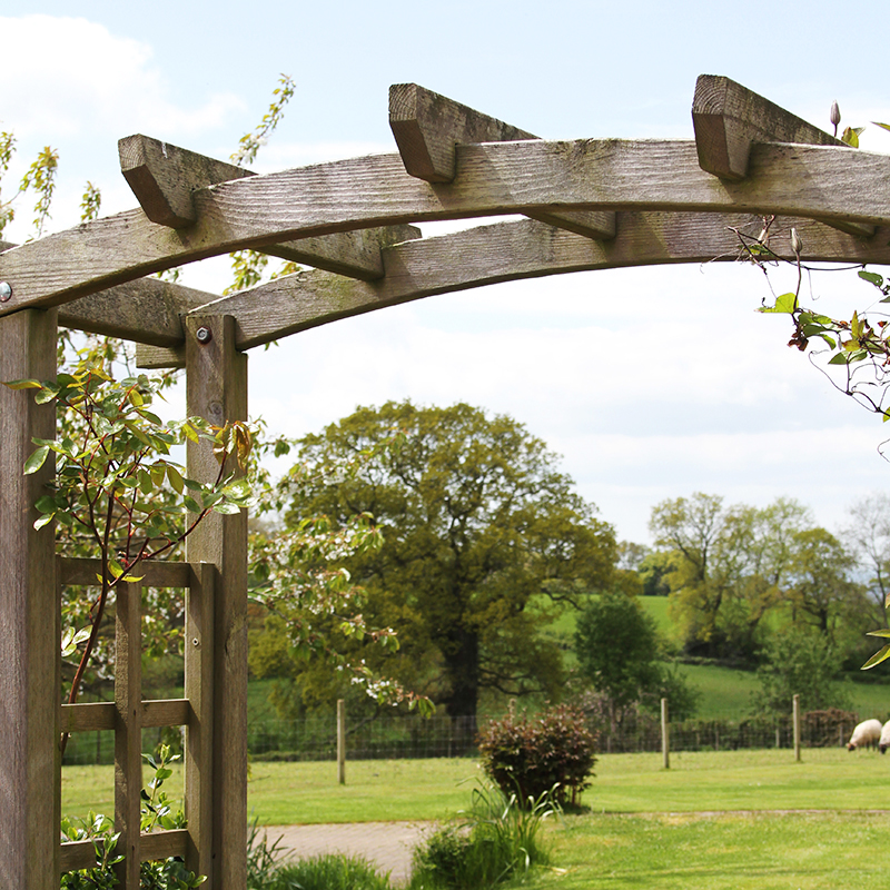 THE GROUNDS - On arrival we want shoulders to drop, smiles to form and the backdrop of the orchard and green fields to work their countryside charms. This part of East Devon is very beautiful.