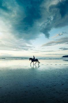 a0a45355cfac3cc109f3a91933bb59cb--horseback-riding-horse-riding.jpg