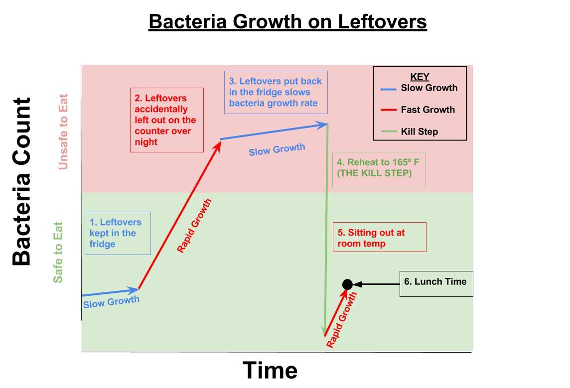 Food Safety Chicken Bacteria.jpg