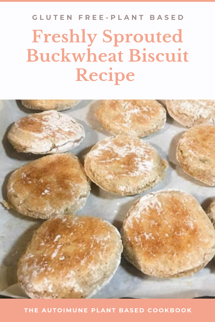 FRESHLY SPROUTED BUCKWHEAT BISCUIT RECIPE