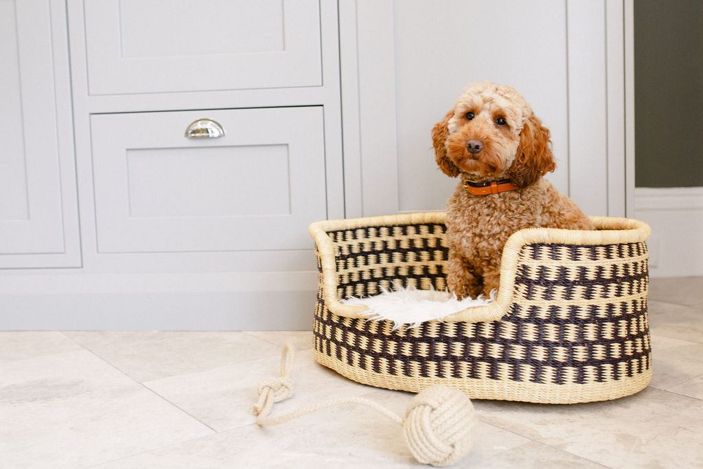 hounds of harrogates dog beds dog accessories