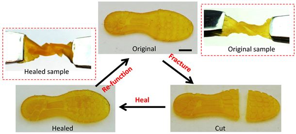 Self-healing of a 3D-printed shoe pad: the shoe pad can sustain a 540-degree twist. Once cut, the shoe pad is brought into contact to heal for two hours at 60 °C. The healed shoe pad can then sustain the 540-degree twist again (scale bar represents 4 mm).
