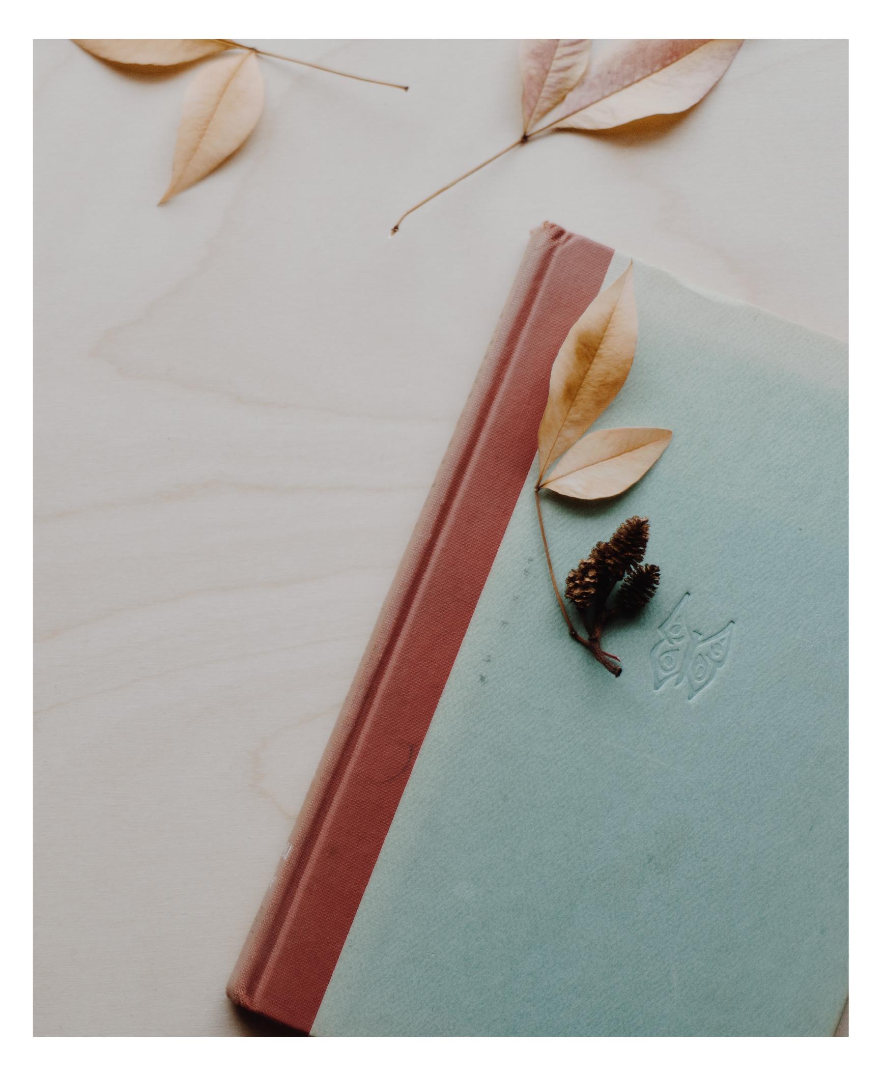 homepage book-32.jpg
