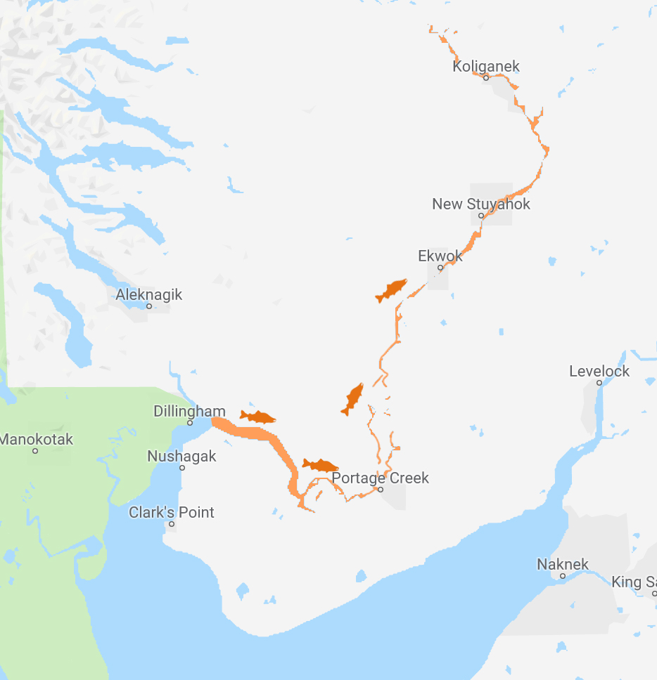 Nushagak River   Lodges along the Nushagak River provide the best access to the Neqa Derby activities. Our check-in/weigh station and cultural activity location is near Portage Creek.