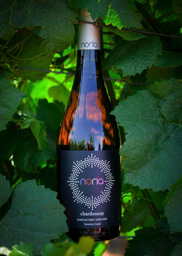 Noria.Wineleaves.png