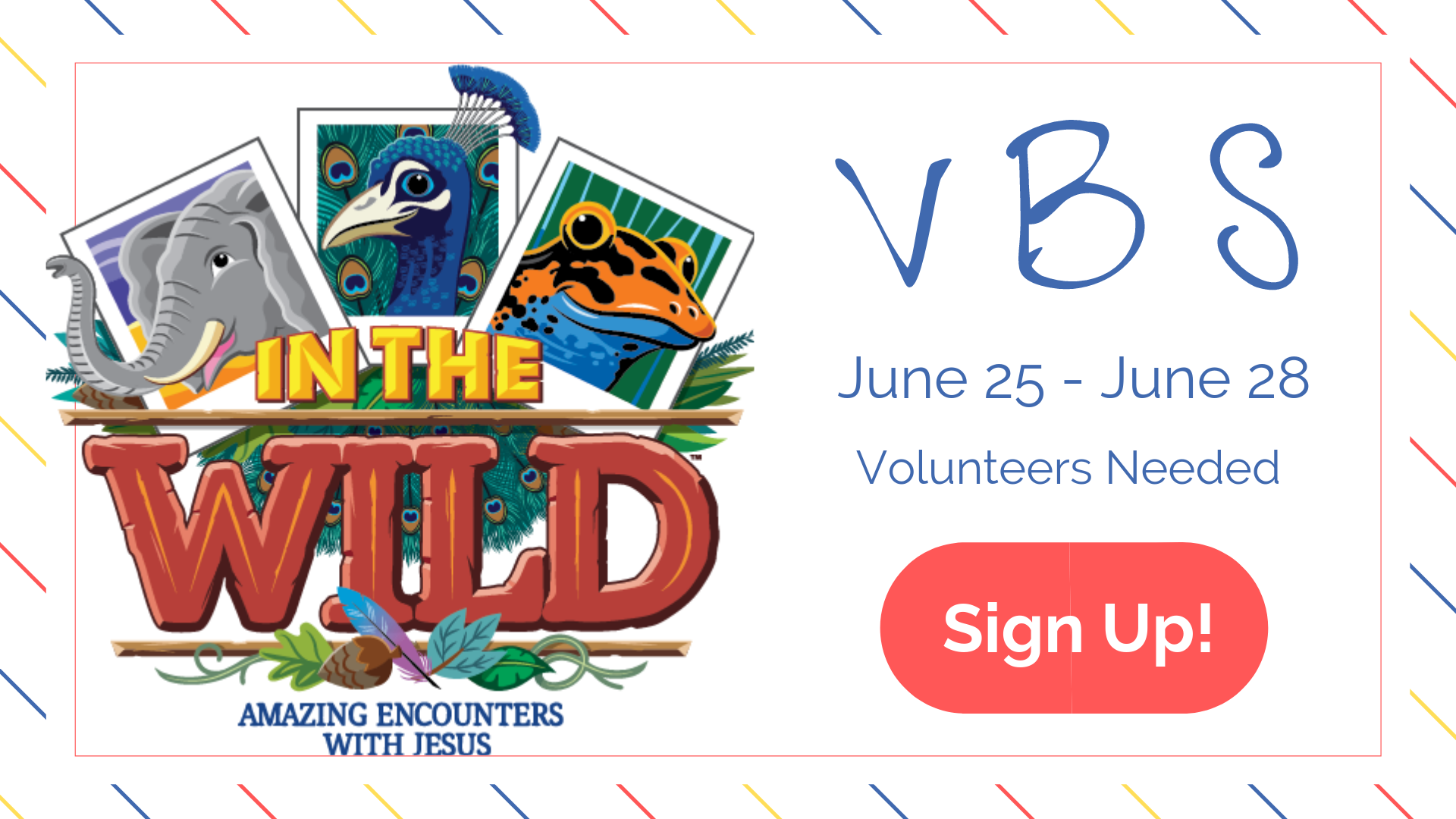 VBS Web Banner.png