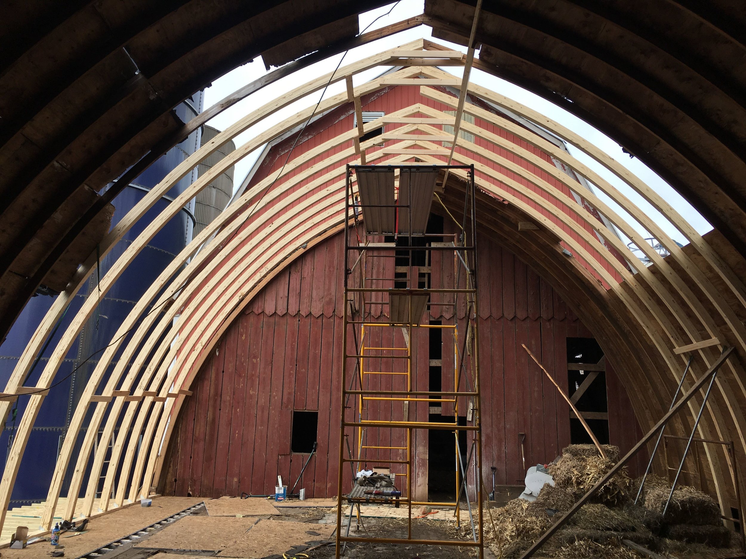 Our first phase required us to clean out the debris from this past Minnesota winter. Second phase was to add new rafters and sheeting. We will soon be adding solar shingles to this positive impact barn restoration.