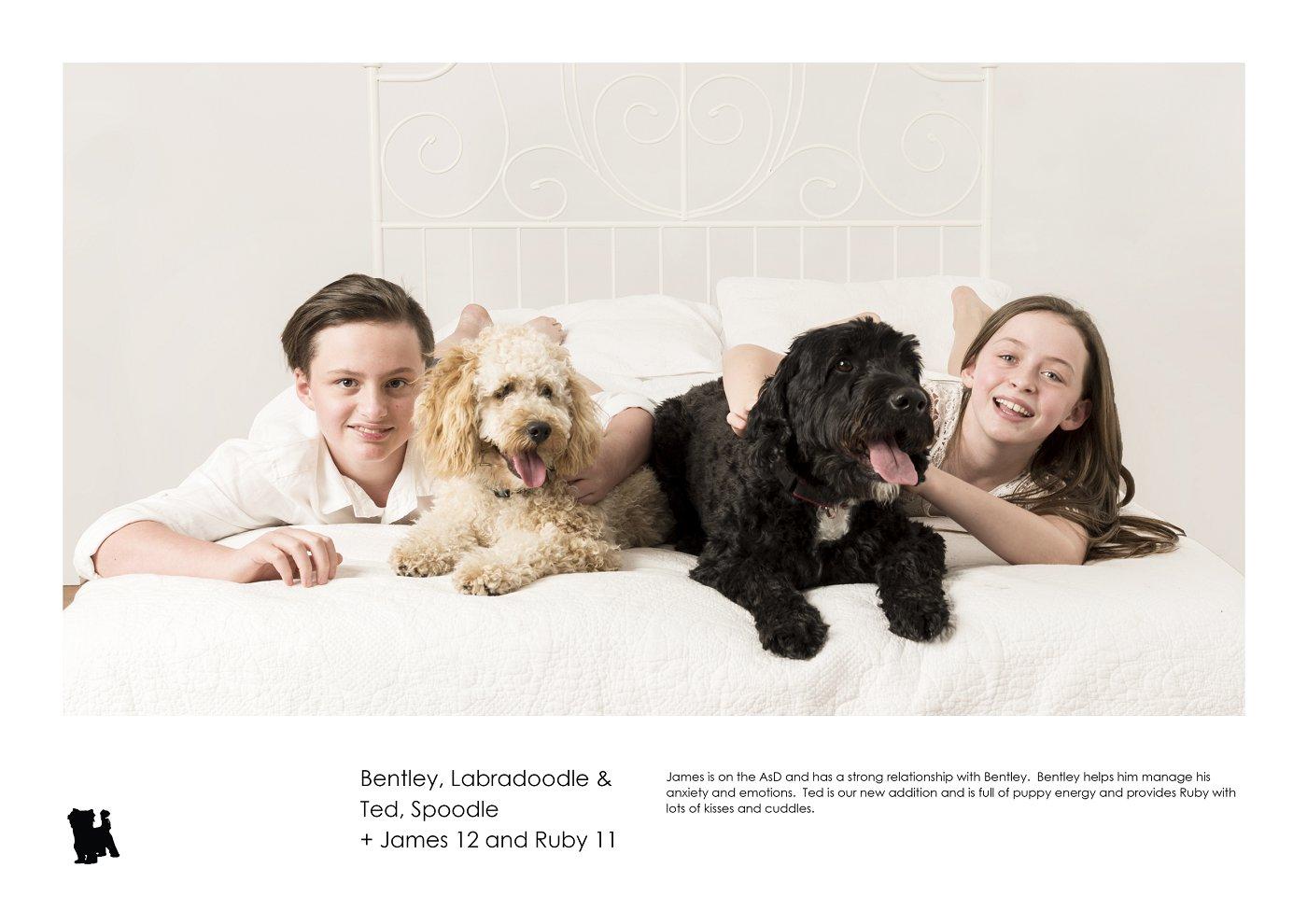 sydney-pet-kids-photographer (62).jpg
