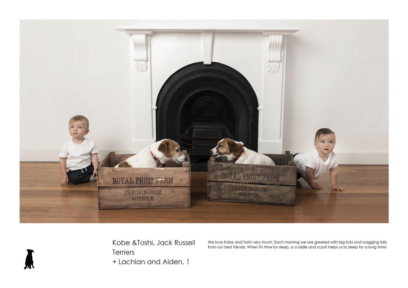sydney-pet-kids-photographer (1).jpg