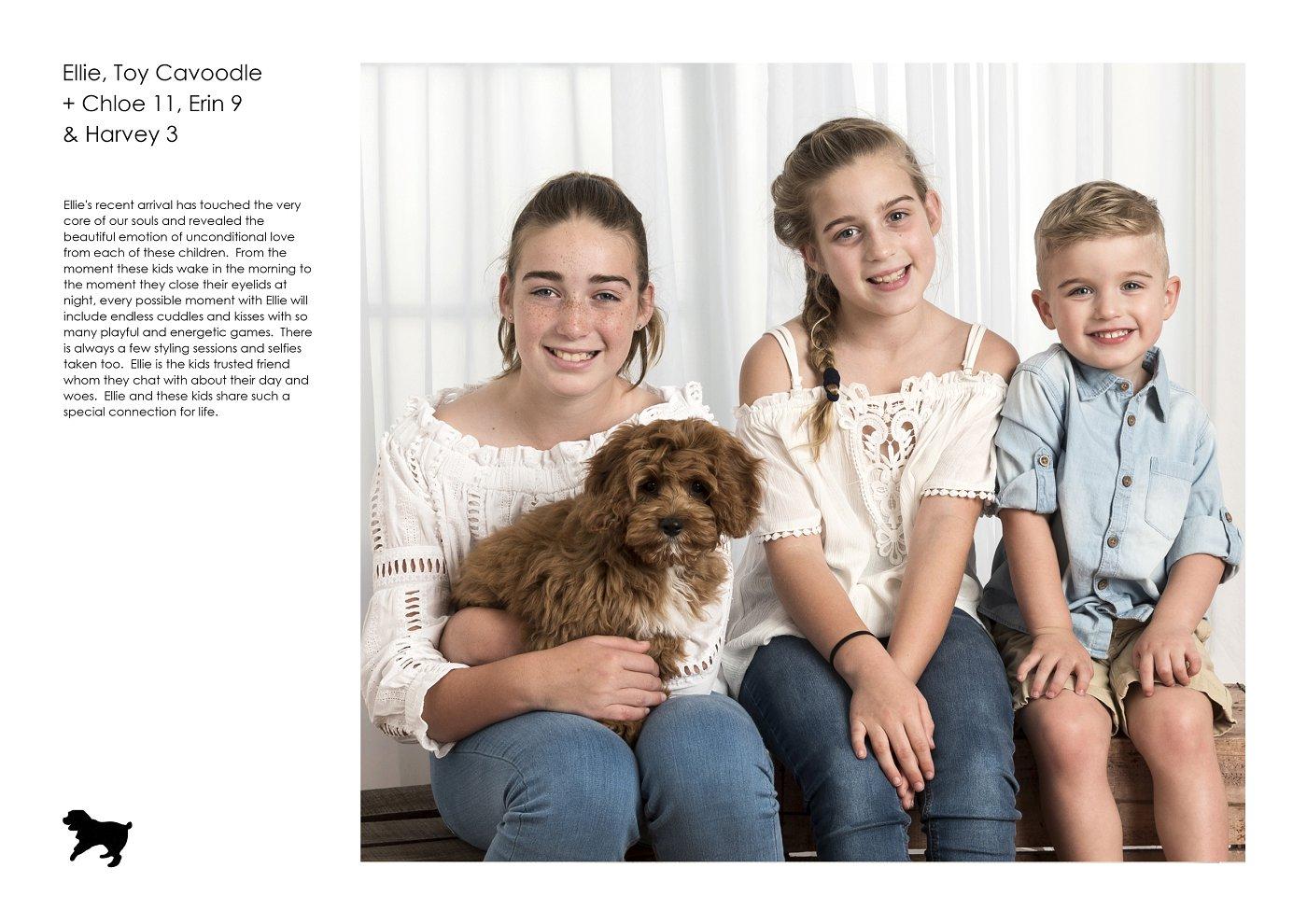sydney-pet-kids-photographer (2).jpg