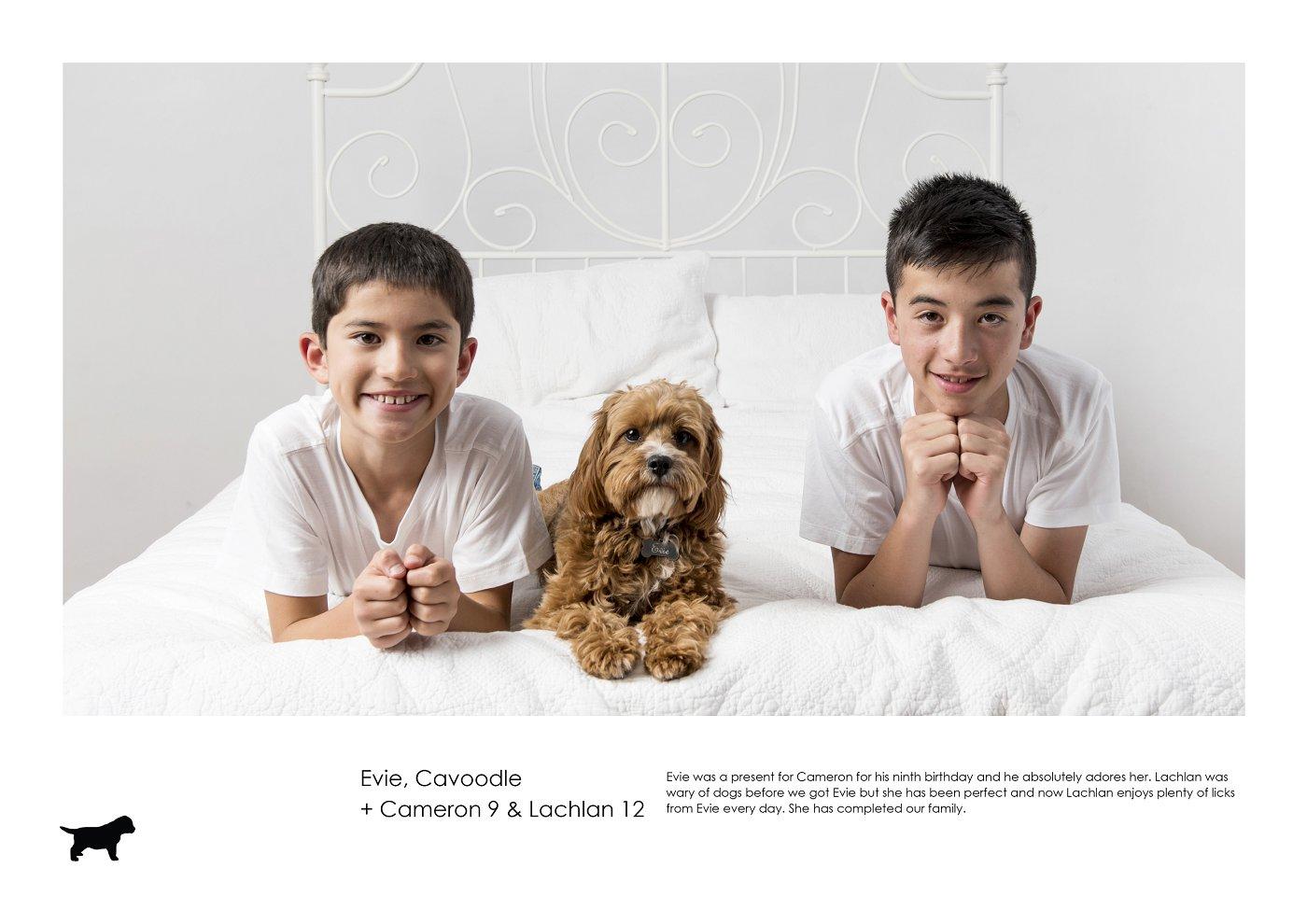 sydney-pet-kids-photographer (4).jpg