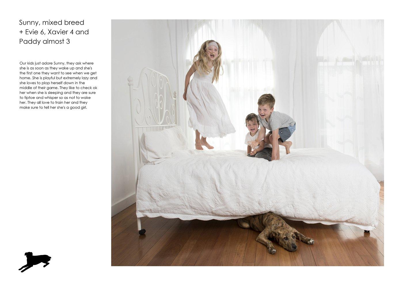 sydney-pet-kids-photographer (7).jpg